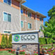 Ecco Apartments Photo